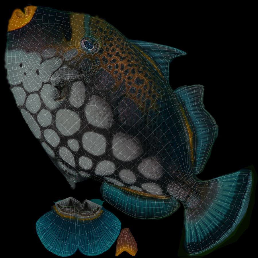 corals and coral fishes collection royalty-free 3d model - Preview no. 249