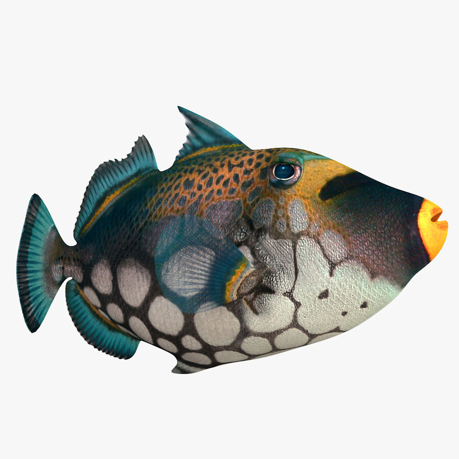 corals and coral fishes collection royalty-free 3d model - Preview no. 245