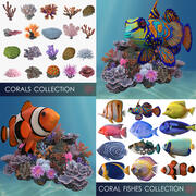 corals and coral fishes collection 3d model