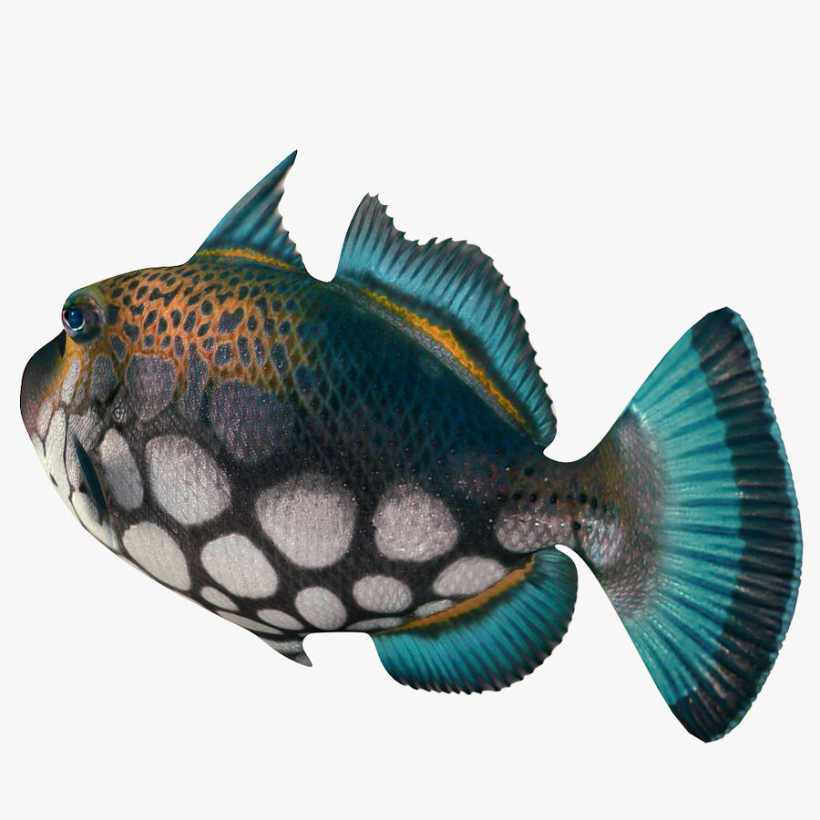 corals and coral fishes collection royalty-free 3d model - Preview no. 244