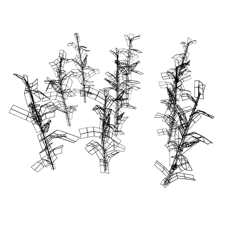 Maïs 3 stades de croissance royalty-free 3d model - Preview no. 10