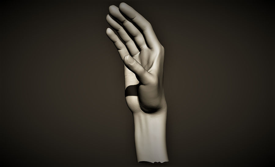 hand_2 royalty-free 3d model - Preview no. 1