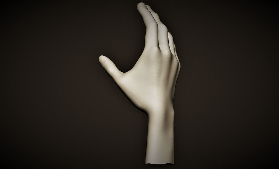 hand_2 royalty-free 3d model - Preview no. 3