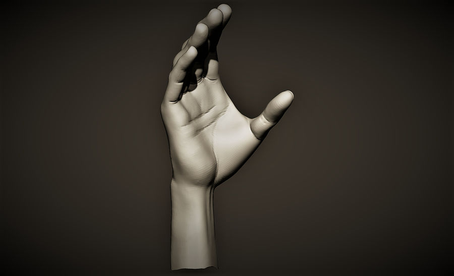 hand_2 royalty-free 3d model - Preview no. 2