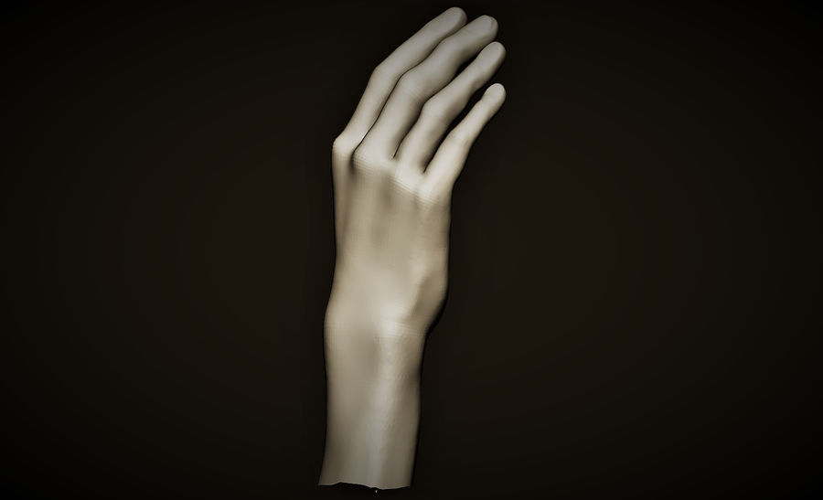hand_2 royalty-free 3d model - Preview no. 4