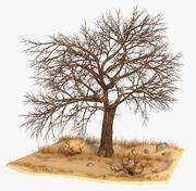 목 마른 나무 3d model