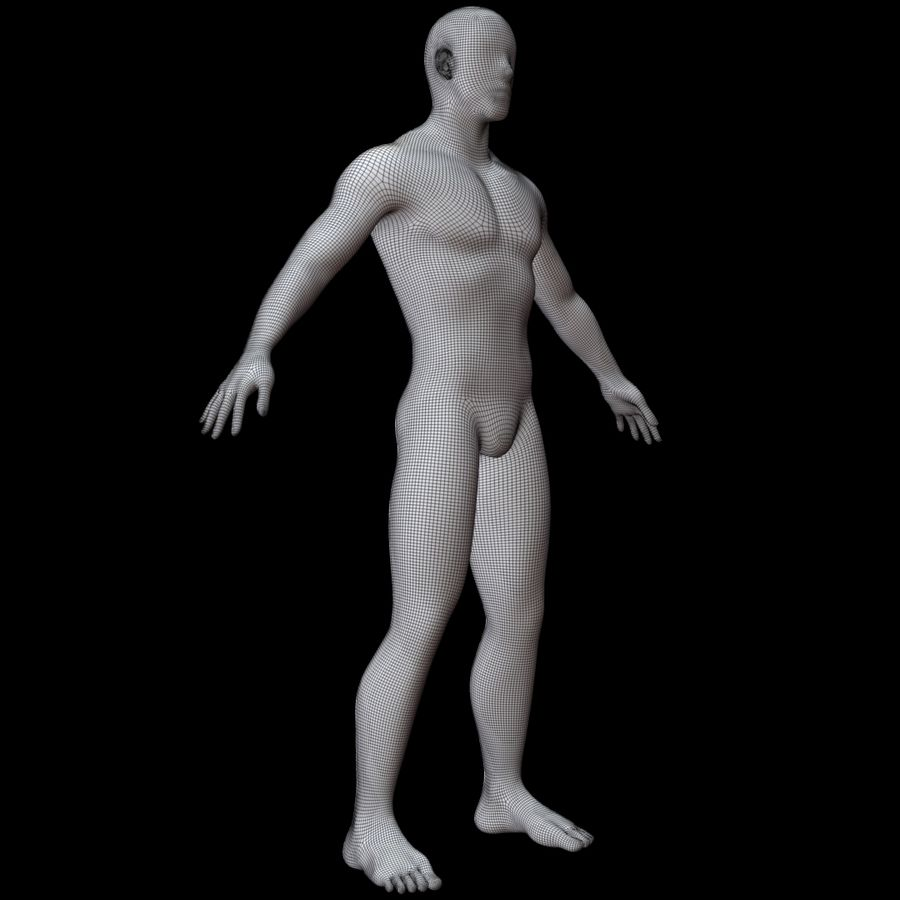 Erkek vücut taban örgü royalty-free 3d model - Preview no. 13
