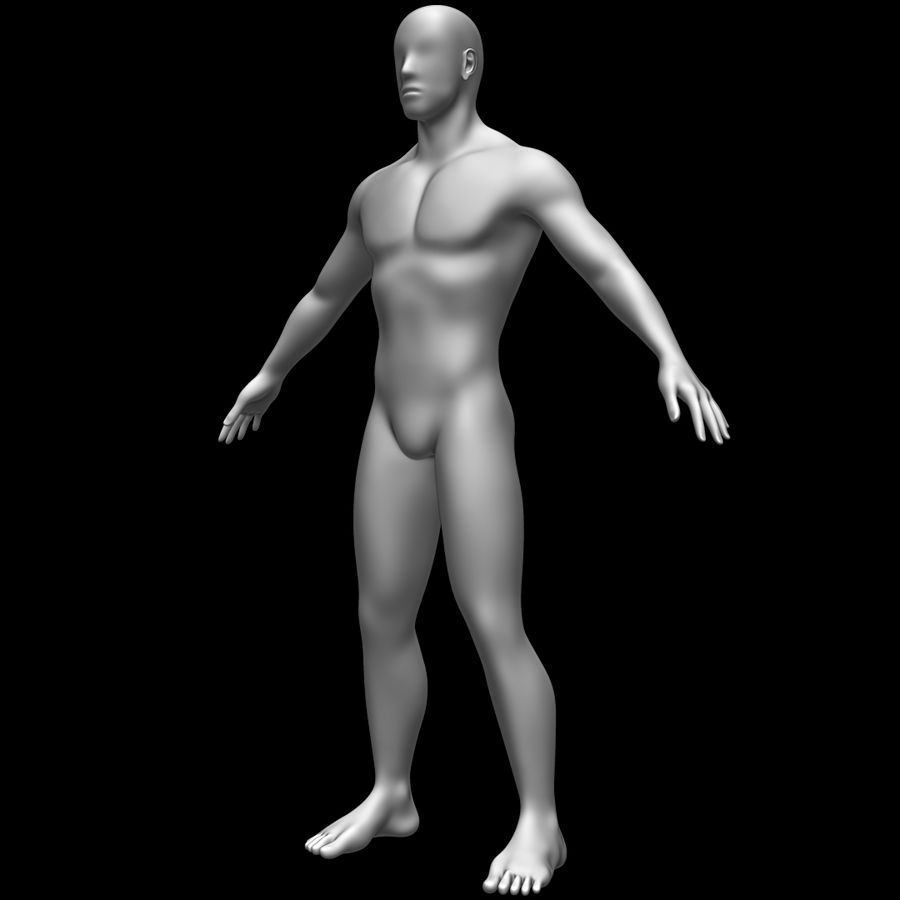 Erkek vücut taban örgü royalty-free 3d model - Preview no. 9