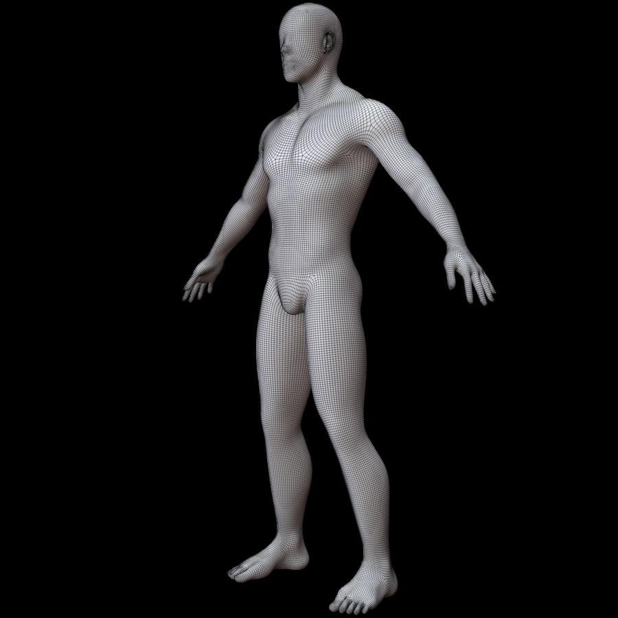 Erkek vücut taban örgü royalty-free 3d model - Preview no. 19