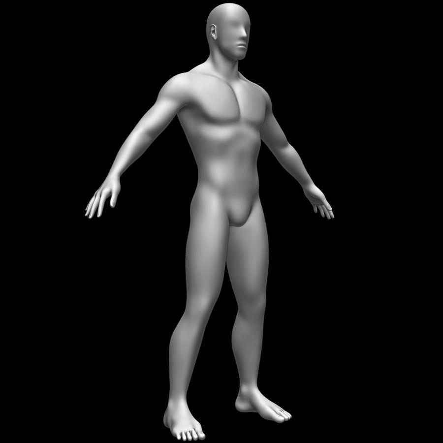 Erkek vücut taban örgü royalty-free 3d model - Preview no. 3