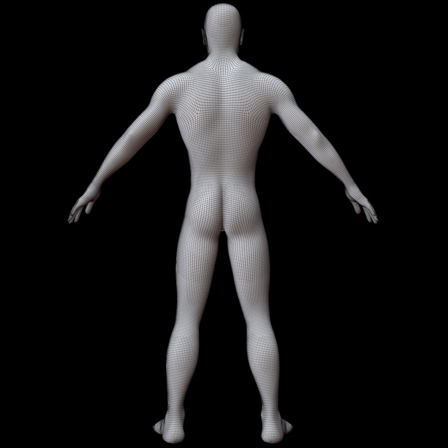 Erkek vücut taban örgü royalty-free 3d model - Preview no. 16
