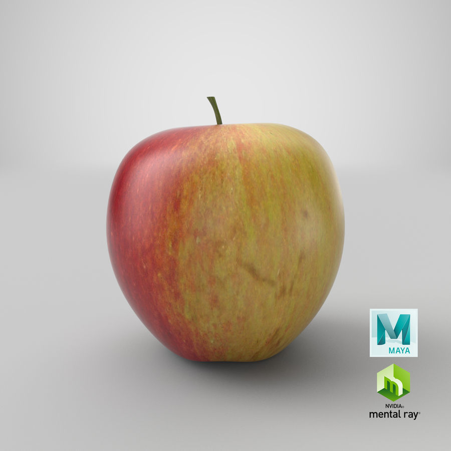 Apple Fruit royalty-free 3d model - Preview no. 16