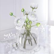Camellia Vase 3d model