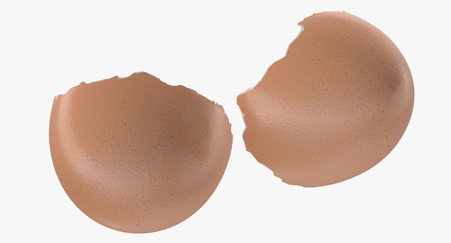 Broken Chicken Egg Shell royalty-free 3d model - Preview no. 7