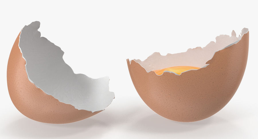 Rozbita skorupa jajka z kurczaka royalty-free 3d model - Preview no. 4