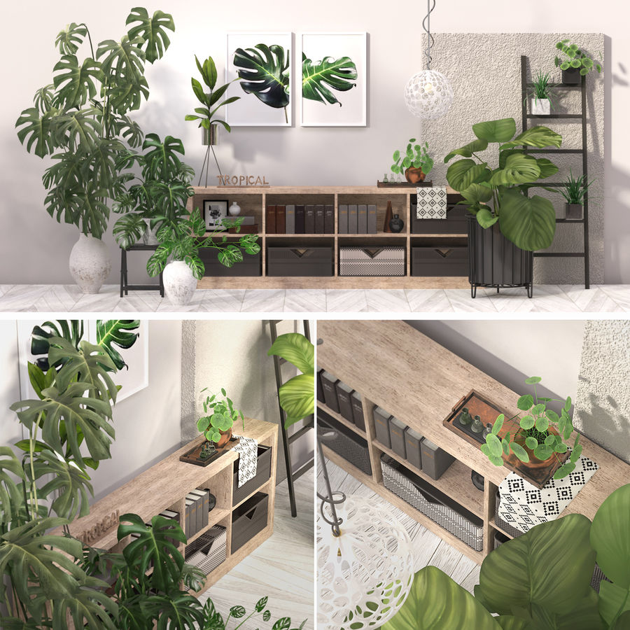 Indoor plant collection royalty-free 3d model - Preview no. 1
