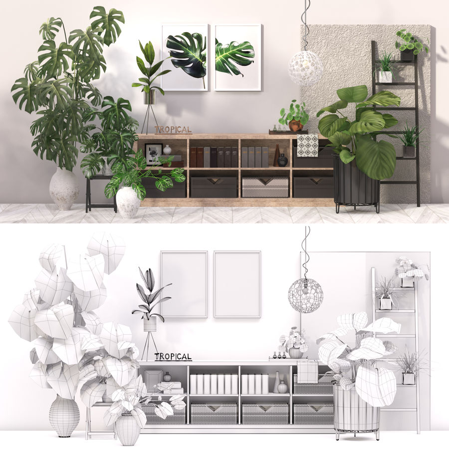 Indoor plant collection royalty-free 3d model - Preview no. 2