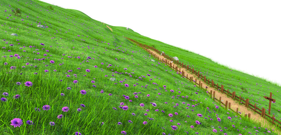Hill Meadow Landscape royalty-free 3d model - Preview no. 3