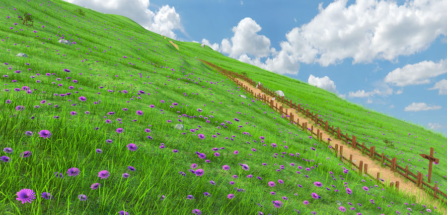 Hill Meadow Landscape royalty-free 3d model - Preview no. 1