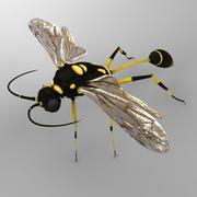 말벌 실리 프론 3d model