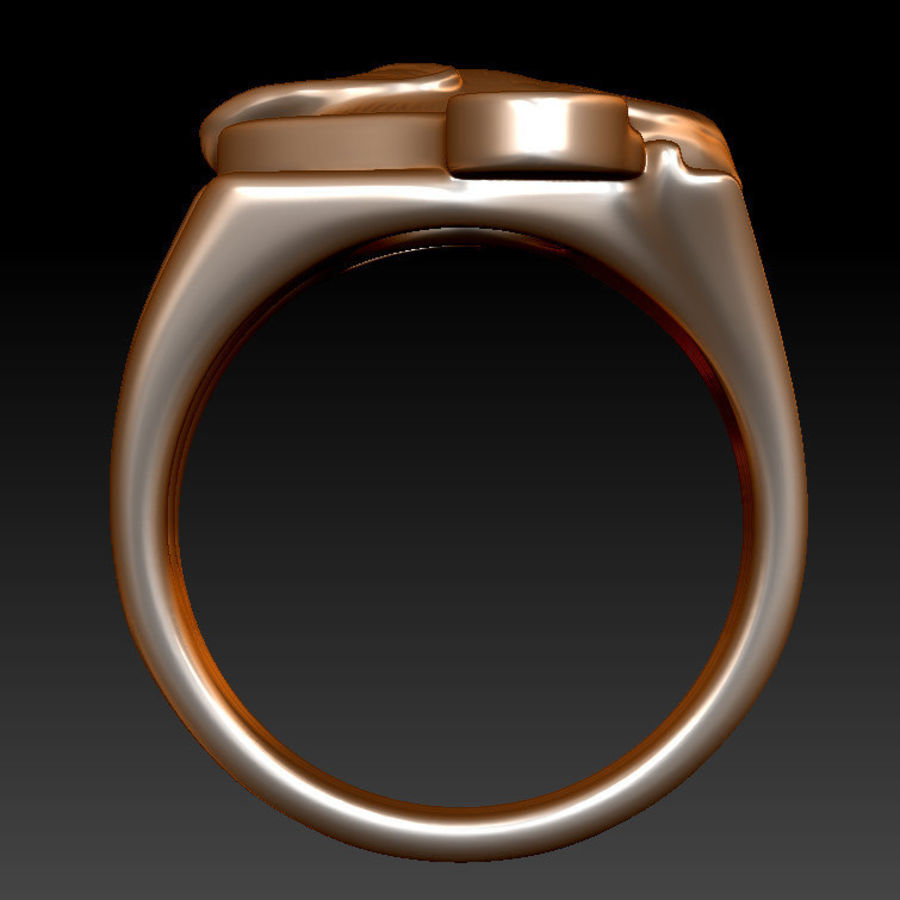 Labrador Ring royalty-free 3d model - Preview no. 6