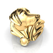 Labrador Ring 3d model
