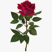 Rosa vermelha 3d model