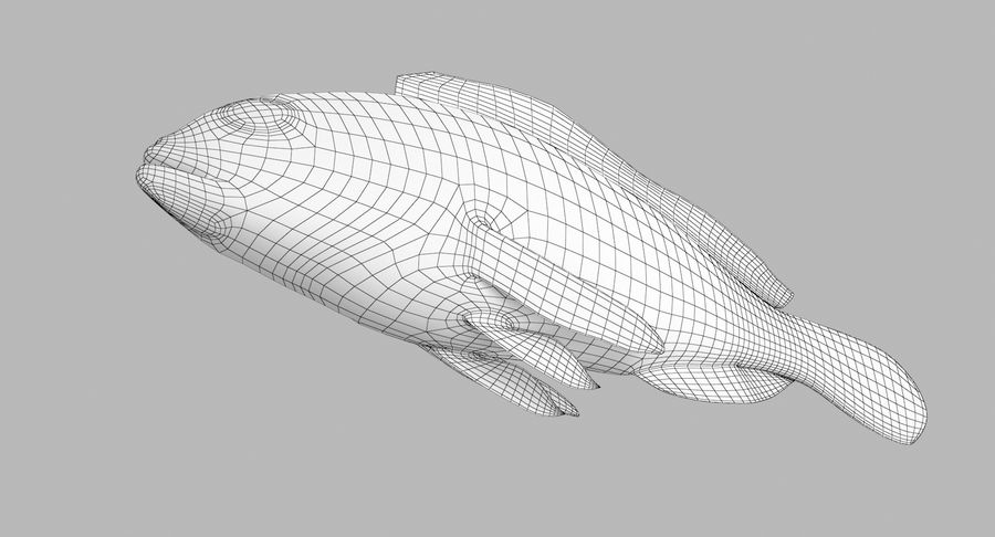 Grouper royalty-free 3d model - Preview no. 15