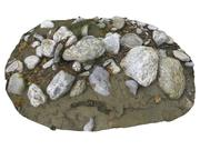 Forest ground Rock 16K 3d model