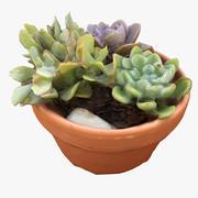 Stół Patio Plant 01 3d model
