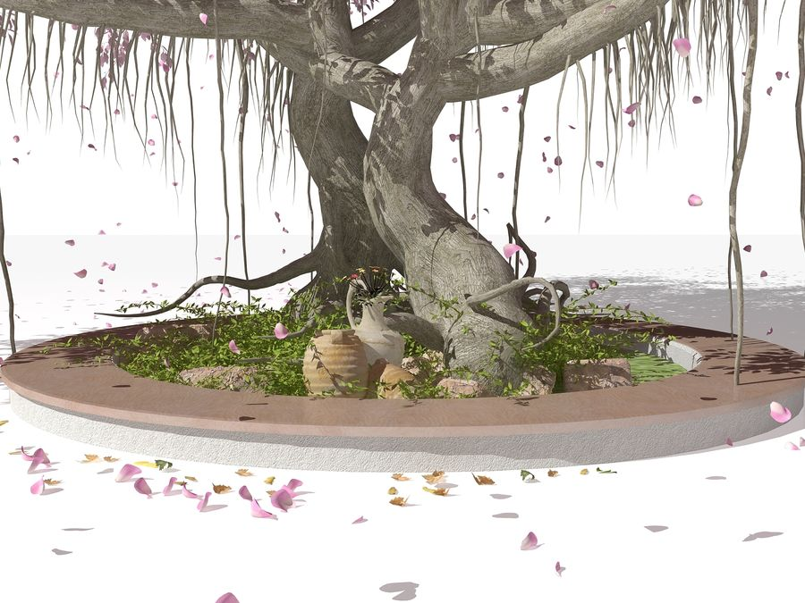 Cherry Blossom Tree royalty-free 3d model - Preview no. 3