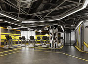 Fitness Gym Room 3d model