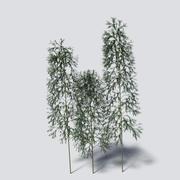 竹包 3d model