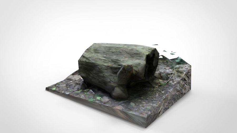 Fotorealistyczne pnie drzew (12 LOD na drzewo) royalty-free 3d model - Preview no. 5