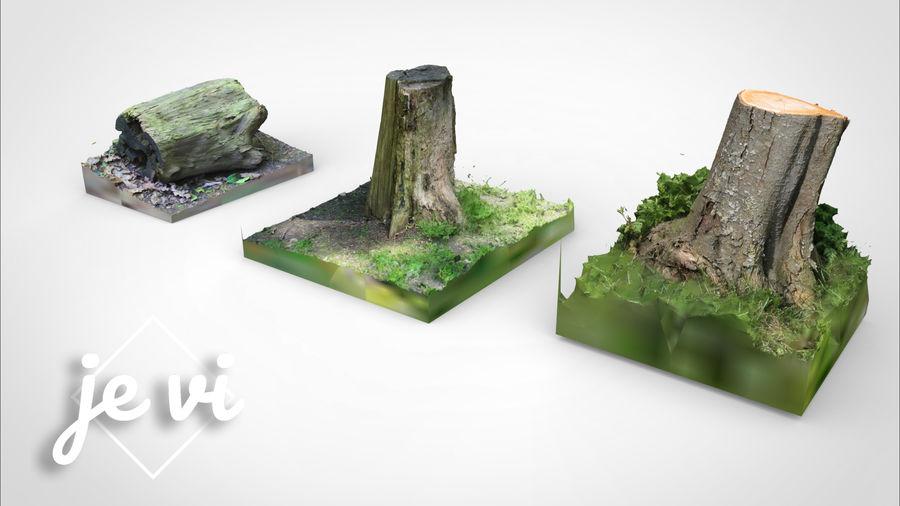 Fotorealistyczne pnie drzew (12 LOD na drzewo) royalty-free 3d model - Preview no. 1