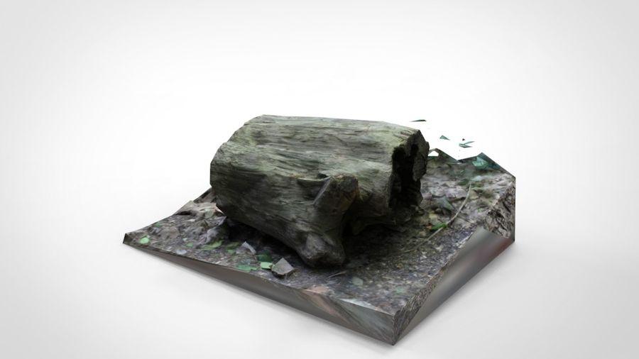 Fotorealistyczne pnie drzew (12 LOD na drzewo) royalty-free 3d model - Preview no. 3