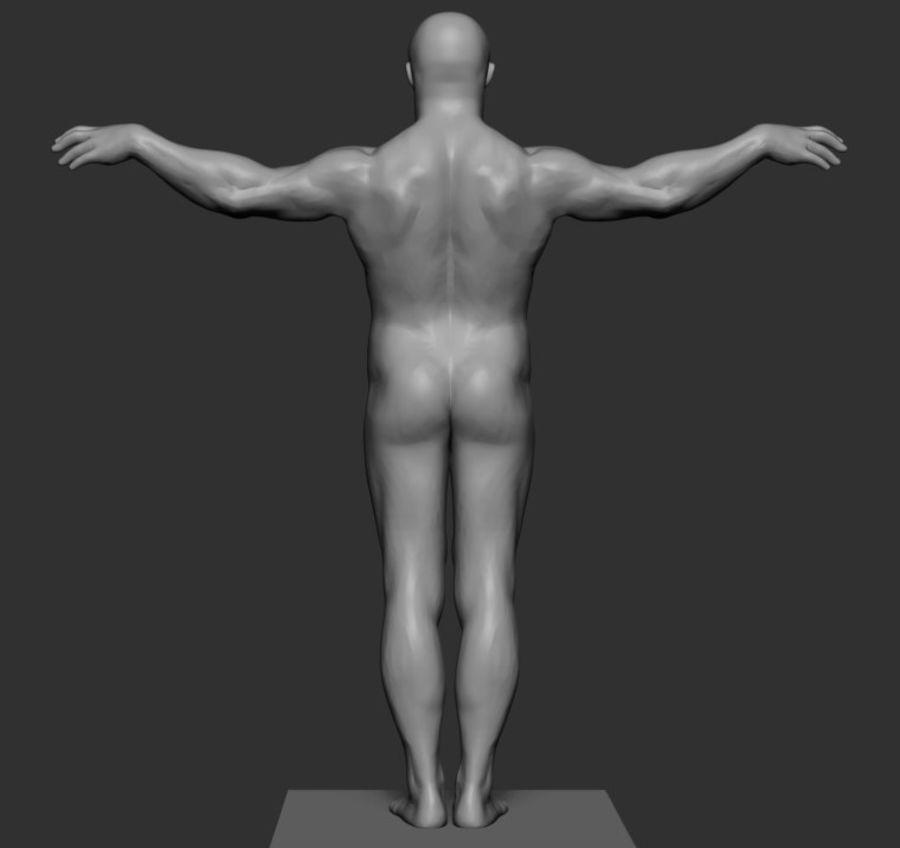 Mannelijke anatomie v5 royalty-free 3d model - Preview no. 3