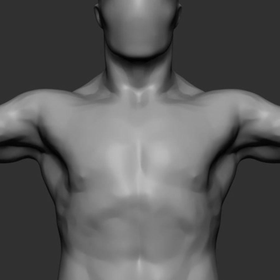 Mannelijke anatomie v5 royalty-free 3d model - Preview no. 4