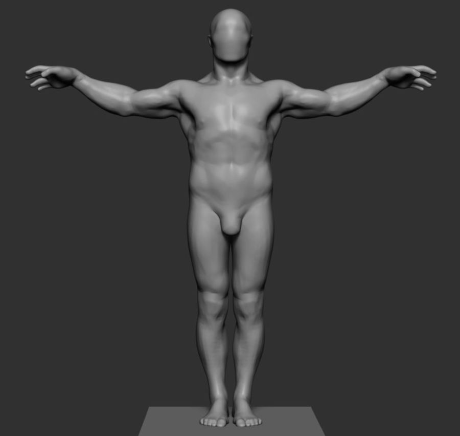 Mannelijke anatomie v5 royalty-free 3d model - Preview no. 1