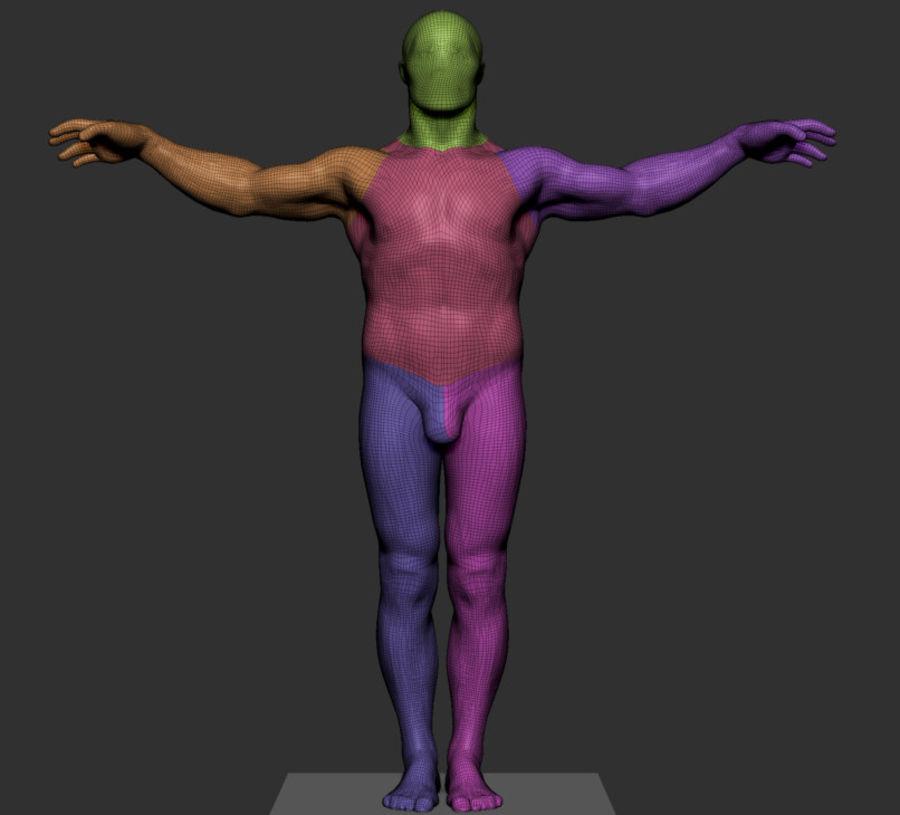 Mannelijke anatomie v5 royalty-free 3d model - Preview no. 6