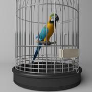 Papegoja i bur 3d model