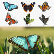 Coleção de modelos 3D de borboletas 2 3d model