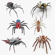 거미 3D 모델 컬렉션 2 3d model
