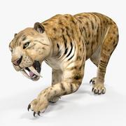 Saber Tooth Tiger Rigged 3D Model 3d model