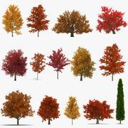 Árboles de otoño Colección de modelos 3D 2 modelo 3d