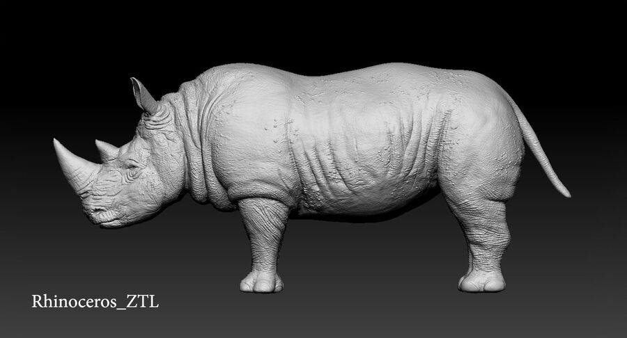 Rhinoceros_Rigged royalty-free modelo 3d - Preview no. 27