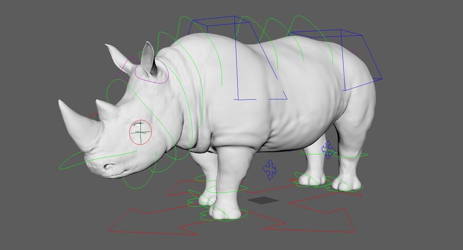 Rhinoceros_Rigged royalty-free modelo 3d - Preview no. 22