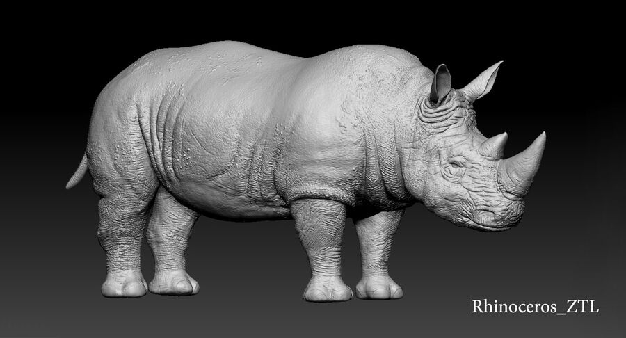 Rhinoceros_Rigged royalty-free modelo 3d - Preview no. 28
