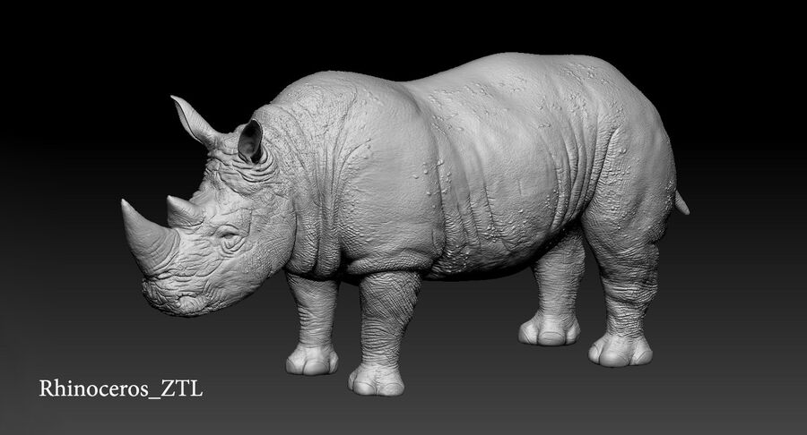 Rhinoceros_Rigged royalty-free modelo 3d - Preview no. 29