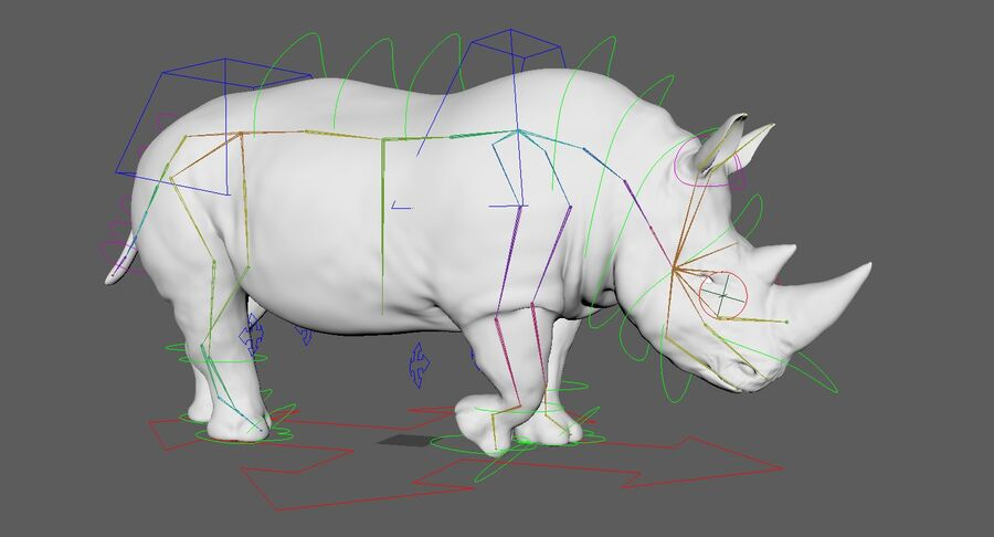 Rhinoceros_Rigged royalty-free modelo 3d - Preview no. 25